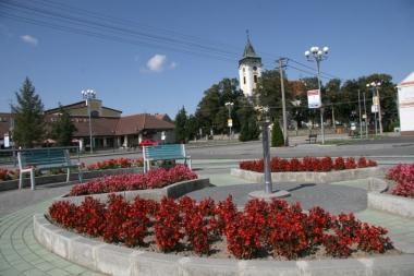 Bez nzvu-2 - Obec Doln Bojanovice